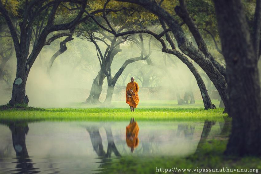 サマタ瞑想とヴィパッサナー瞑想
